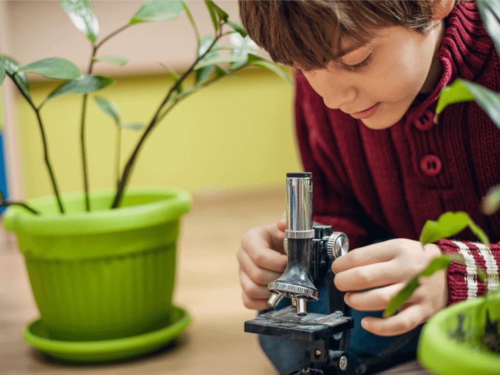 自由研究(小学5年生)はどんなテーマや工作、実験がおススメ?
