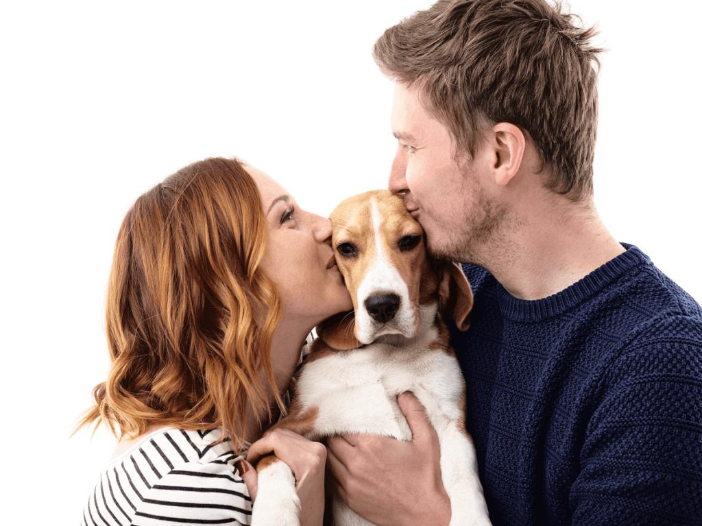 夫婦円満の秘訣はペットにあり?その影響とおすすめの小動物10選