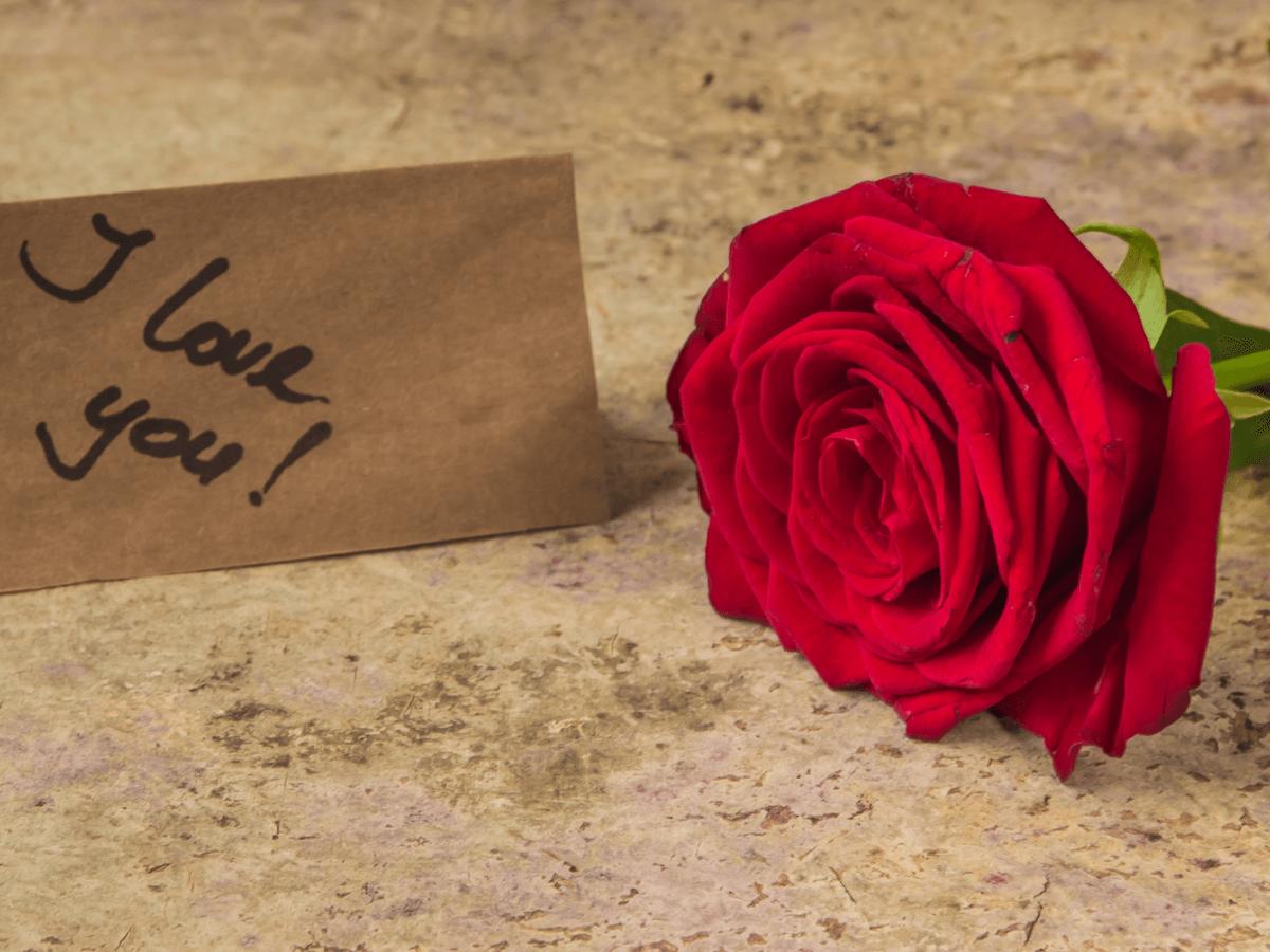 結婚10周年に伝えたい英文メッセージ