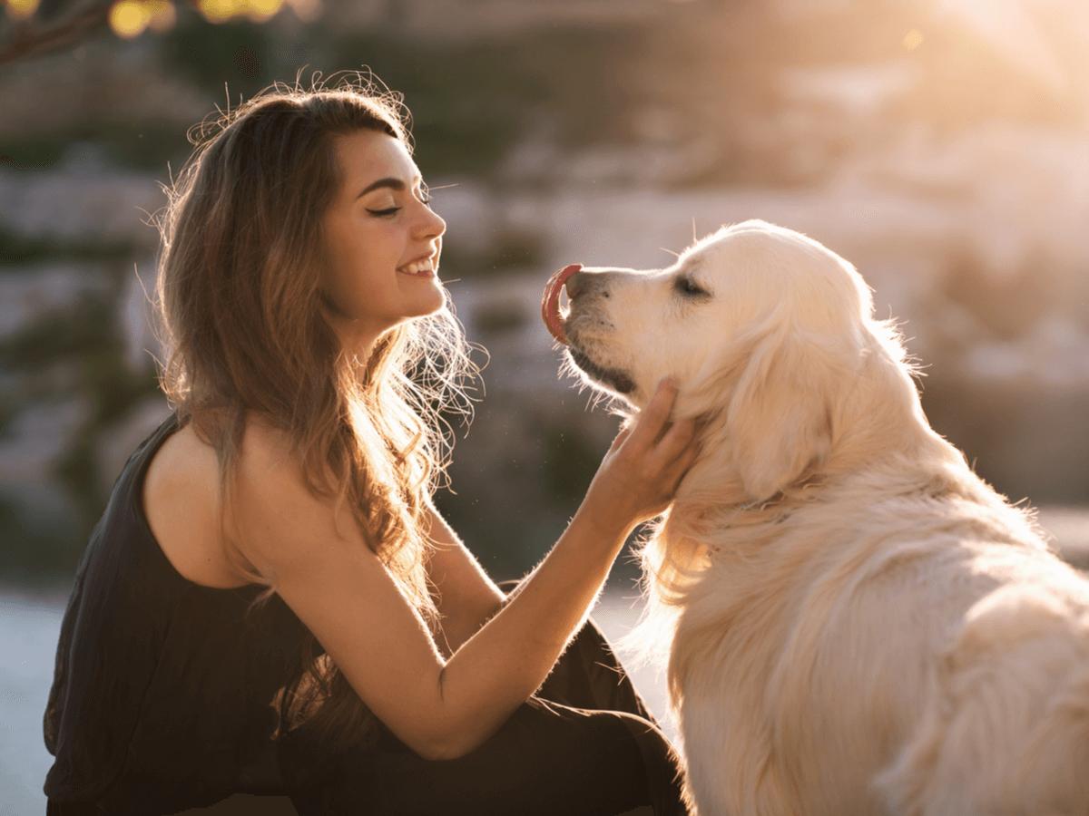 ペットシッターになるのはどうすればいい?動物と飼い主さんの信頼が必要な詳しい仕事内容とは