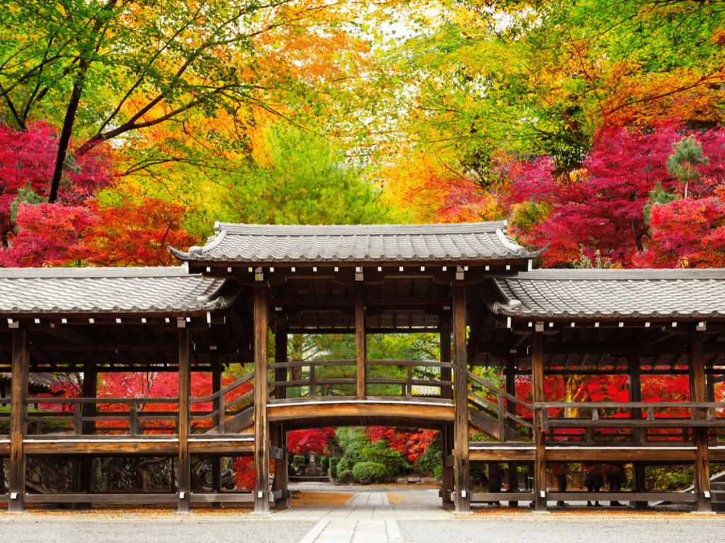 子宝 神社
